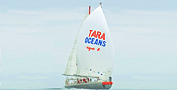 Tara Oceans science