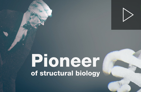 Structural biology through the years