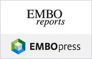 EMBOpress_reports