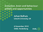 Evolution, Brain and Behaviour: Pitfalls and Opportunities